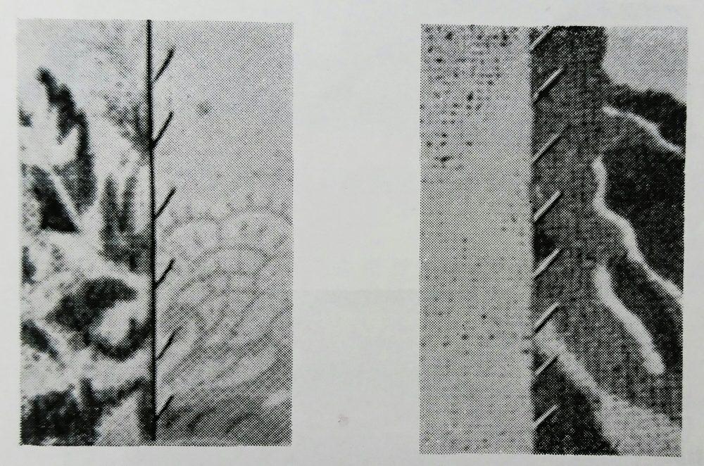 ユーエス・ブラインド・ステッチ 518-9(跳縫ミシン)の縫見本